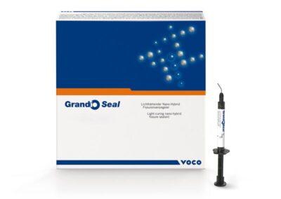 Sellador de Fisuras Grandio Seal